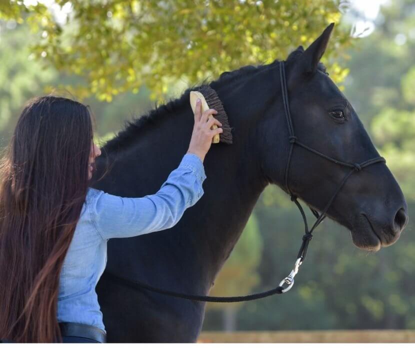 body shaming equestrian sport