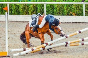 A horse and it's rider fall in the middle of a jump during competition. This could symbolize the trauma of horse riding accidents. We provide support with equestrian related trauma therapy in Scotch Plains, NJ. Contact a trauma therapist for support today.